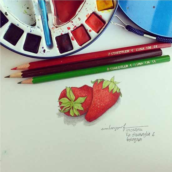 Strawberries sketch by Emila Yusof, done while at the 2014 Bologna Book Fair