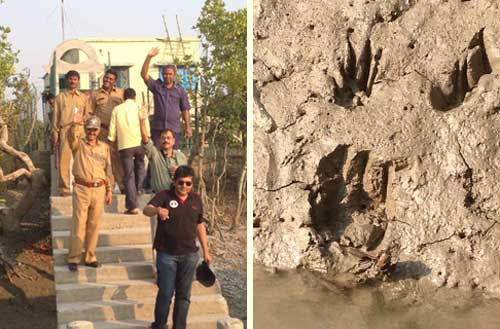 Author Mitali Perkins in the Sunderbans, India: national park rangers and tiger pug marks