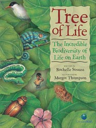 Tree of Life: The Incredible Biodiversity of Life on Earth, written by Rochelle Strauss, illustrated by Margot Thompson(Kids Can Press, 2004 / paperback 2013)