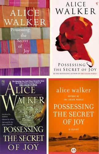Possessing the Secret of Joy, by Alice Walker