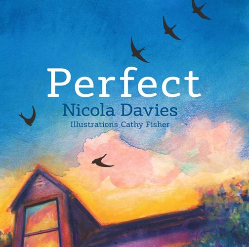 Perfect, written by Nicola Davies, illustrated by Cathy Fisher (Graffeg, 2016)